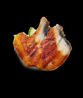 Sashimi anguille